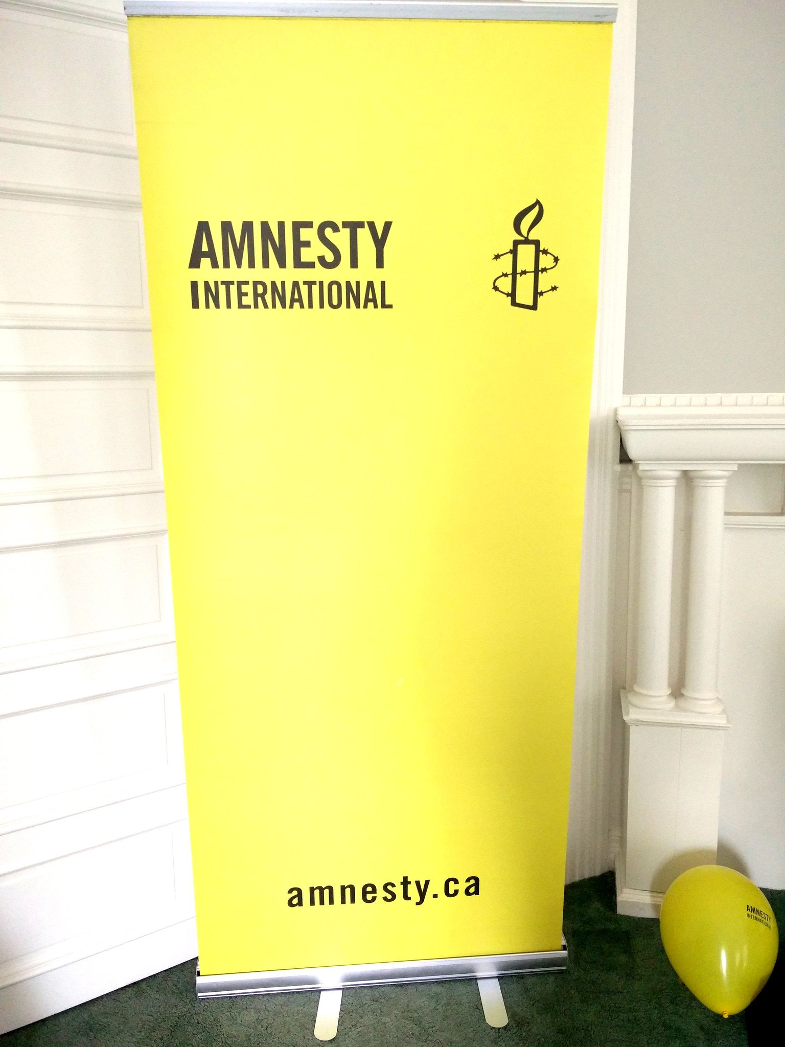Amnesty Stand Up Banner (with Stand and Carry Case)